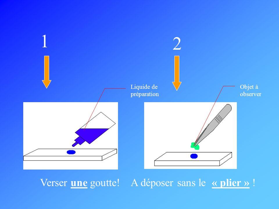 1 2 Liquide de préparation Objet à observer Verser une goutte!A déposer sans le « plier » !