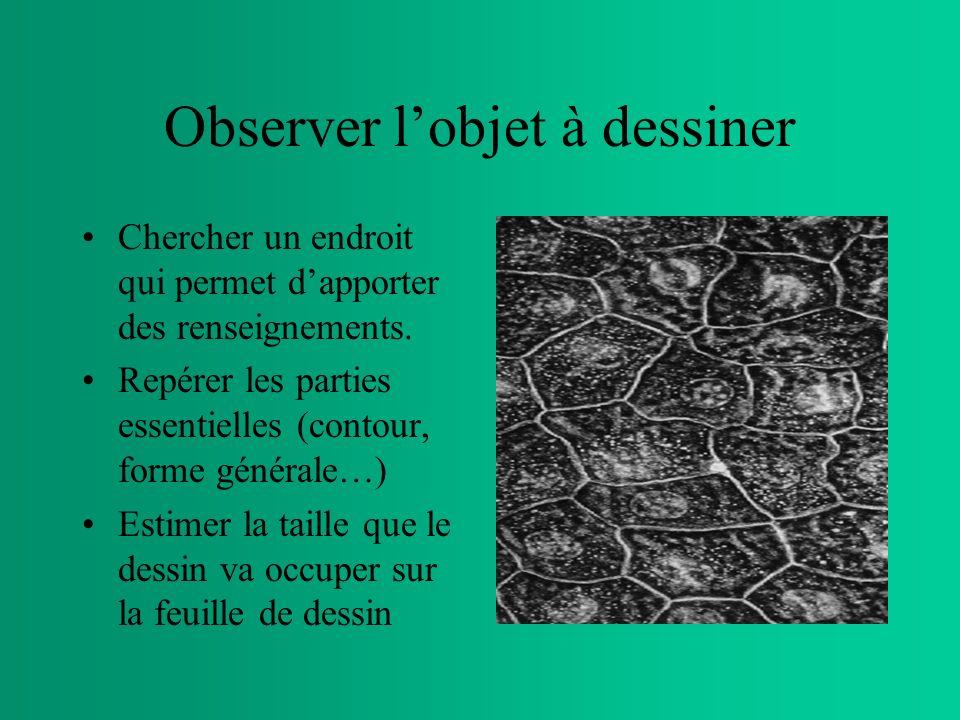 Observer lobjet à dessiner Chercher un endroit qui permet dapporter des renseignements.