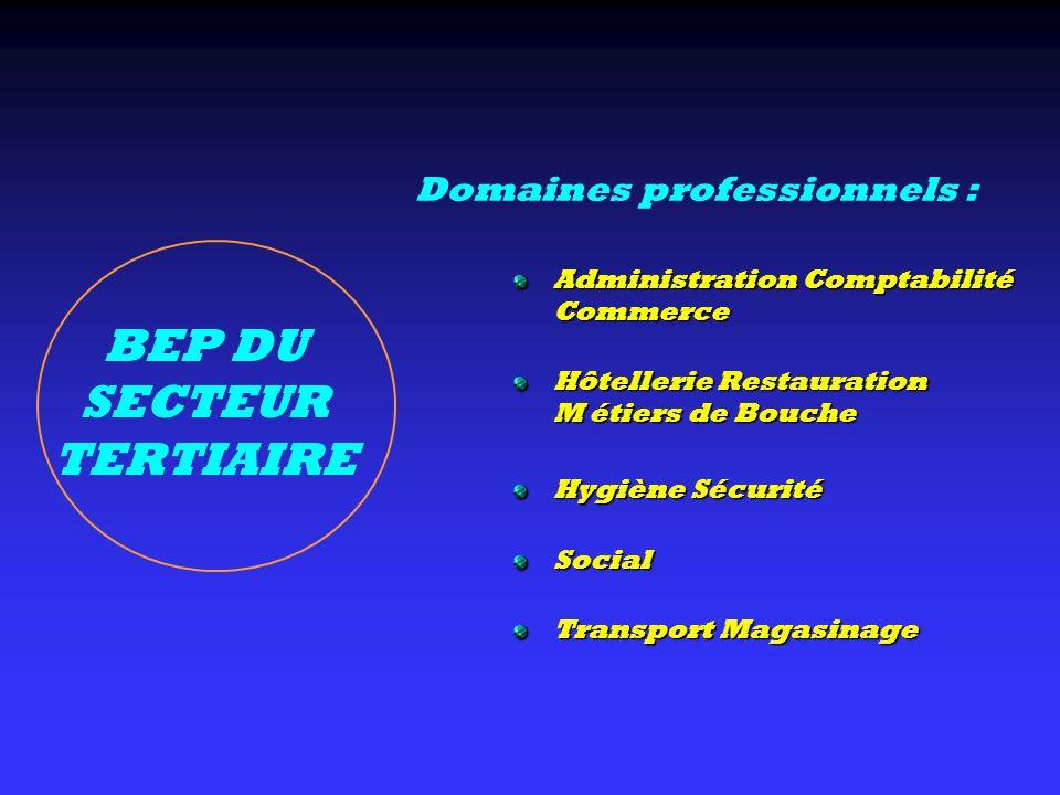 BEP DU SECTEUR TERTIAIRE Administration Comptabilité Commerce Hôtellerie Restauration M étiers de Bouche Hygiène Sécurité Social Transport Magasinage