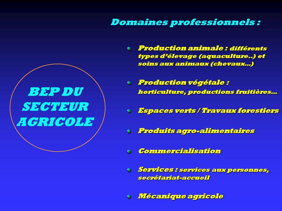 BEP DU SECTEUR AGRICOLE Production animale : différents types délevage (aquaculture..) et soins aux animaux (chevaux…) Production végétale : horticult