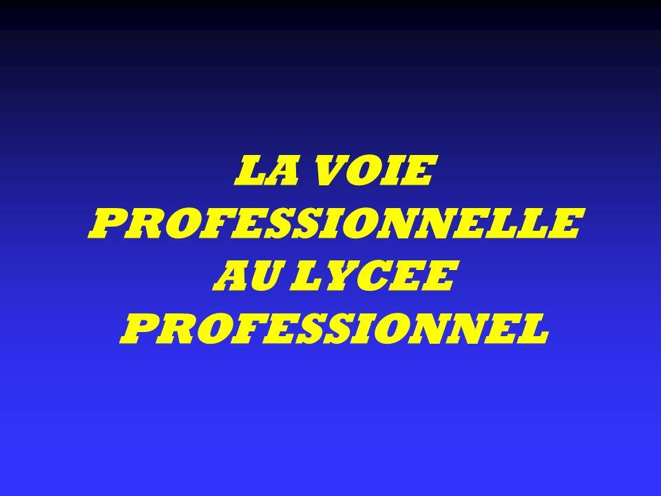 LA VOIE PROFESSIONNELLE AU LYCEE PROFESSIONNEL