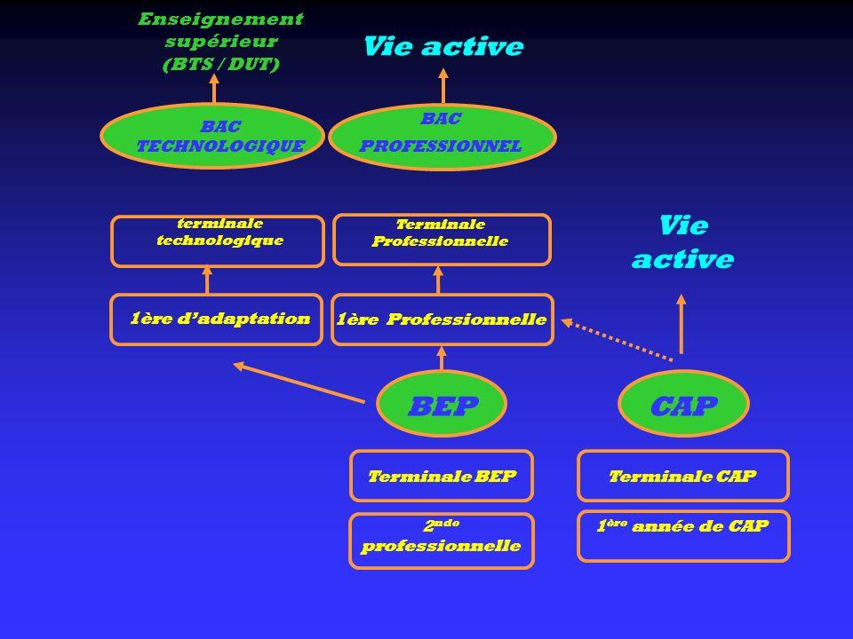 CAP Terminale CAP 1 ère année de CAP BAC TECHNOLOGIQUE terminale technologique 1ère dadaptation Enseignement supérieur (BTS / DUT) Vie active BAC PROF