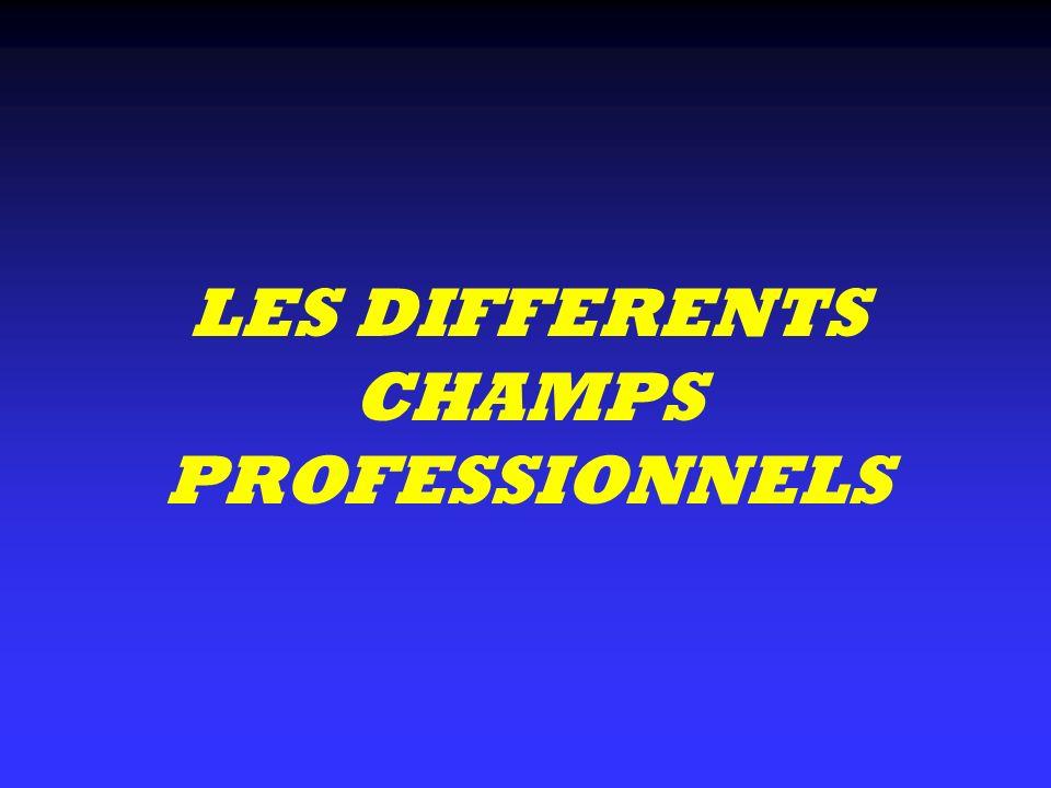 LES DIFFERENTS CHAMPS PROFESSIONNELS