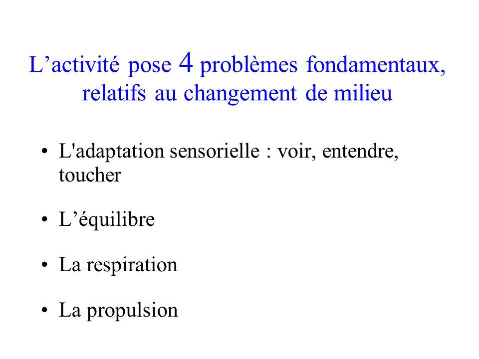 Lactivité pose 4 problèmes fondamentaux, relatifs au changement de milieu L'adaptation sensorielle : voir, entendre, toucher Léquilibre La respiration