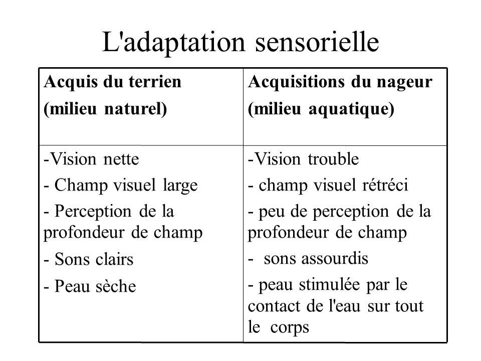 L'adaptation sensorielle -Vision trouble - champ visuel rétréci - peu de perception de la profondeur de champ - sons assourdis - peau stimulée par le