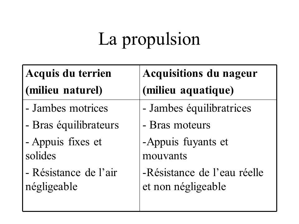 La propulsion - Jambes équilibratrices - Bras moteurs -Appuis fuyants et mouvants -Résistance de leau réelle et non négligeable - Jambes motrices - Br