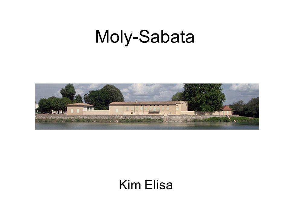 présentation Moly-Sabata est une maison située au bord du Rhône à Sablons (Isère) à 50 km au sud de Lyon.