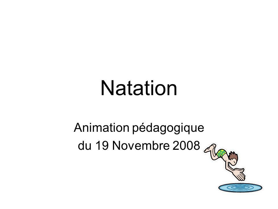 Natation Animation pédagogique du 19 Novembre 2008