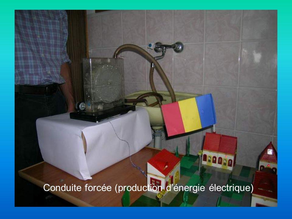 Conduite forcée (production dénergie électrique)