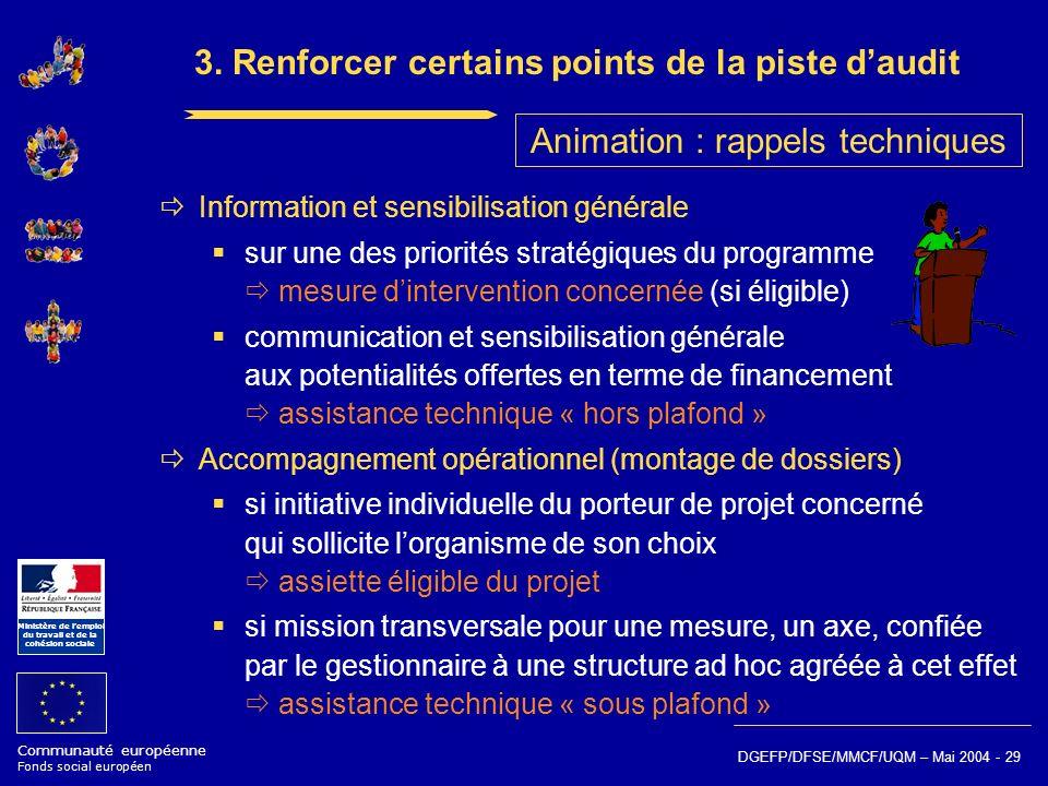 Communauté européenne Fonds social européen Ministère de lemploi du travail et de la cohésion sociale DGEFP/DFSE/MMCF/UQM – Mai 2004 - 29 3. Renforcer