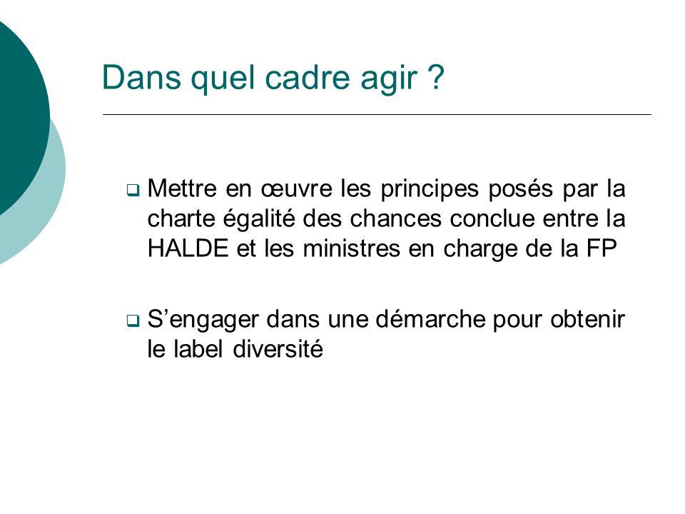 Dans quel cadre agir ? Mettre en œuvre les principes posés par la charte égalité des chances conclue entre la HALDE et les ministres en charge de la F