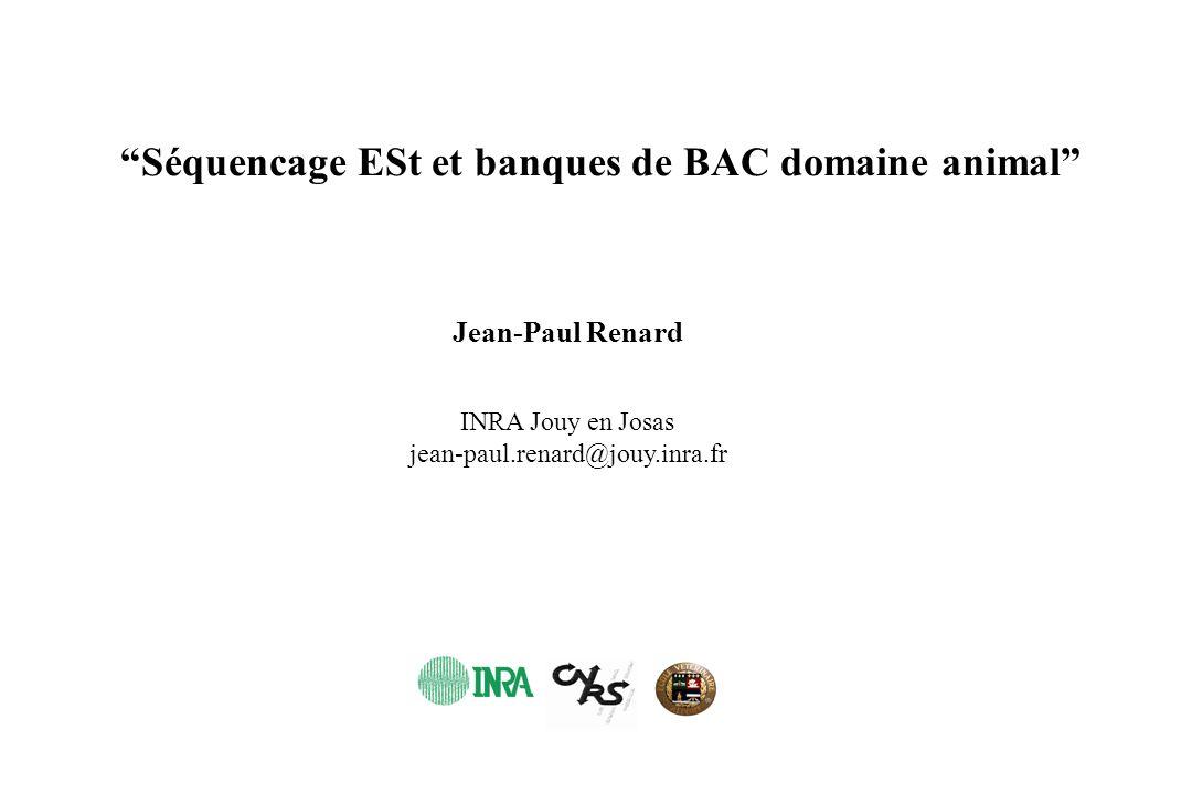 Séquencage ESt et banques de BAC domaine animal INRA Jouy en Josas jean-paul.renard@jouy.inra.fr Jean-Paul Renard