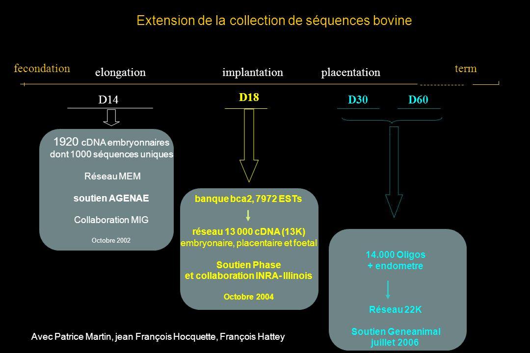 fecondation placentationimplantation term elongation D14 1920 cDNA embryonnaires dont 1000 séquences uniques Réseau MEM soutien AGENAE Collaboration MIG Octobre 2002 D30D60 Extension de la collection de séquences bovine D18 banque bca2, 7972 ESTs réseau 13 000 cDNA (13K) embryonaire, placentaire et foetal Soutien Phase et collaboration INRA- Illinois Octobre 2004 14.000 Oligos + endometre Réseau 22K Soutien Geneanimal juillet 2006 Avec Patrice Martin, jean François Hocquette, François Hattey