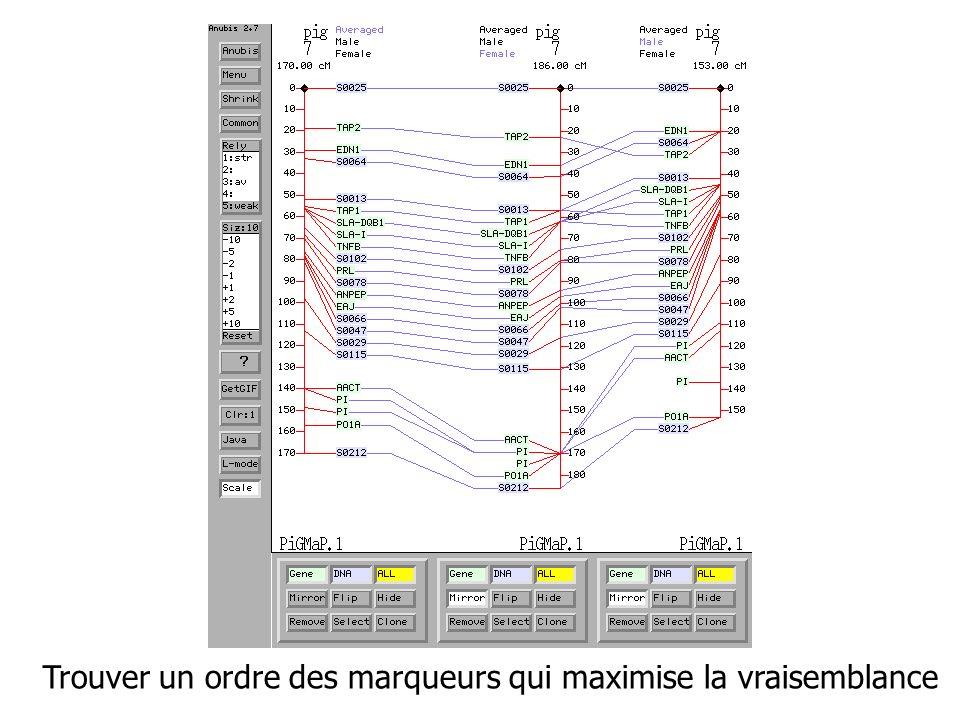 Complexité Ordinateur de référence Ordinateur 100 fois plus rapide Ordinateur 1000 fois plus rapide NN1100*N11000*N1 N2N2 N210*N231,6*N2 N3N3 N34,64*N310*N3 2N2N N4N4+6,64N4+9,97 3N3N N5N5+4,19N5+6,29