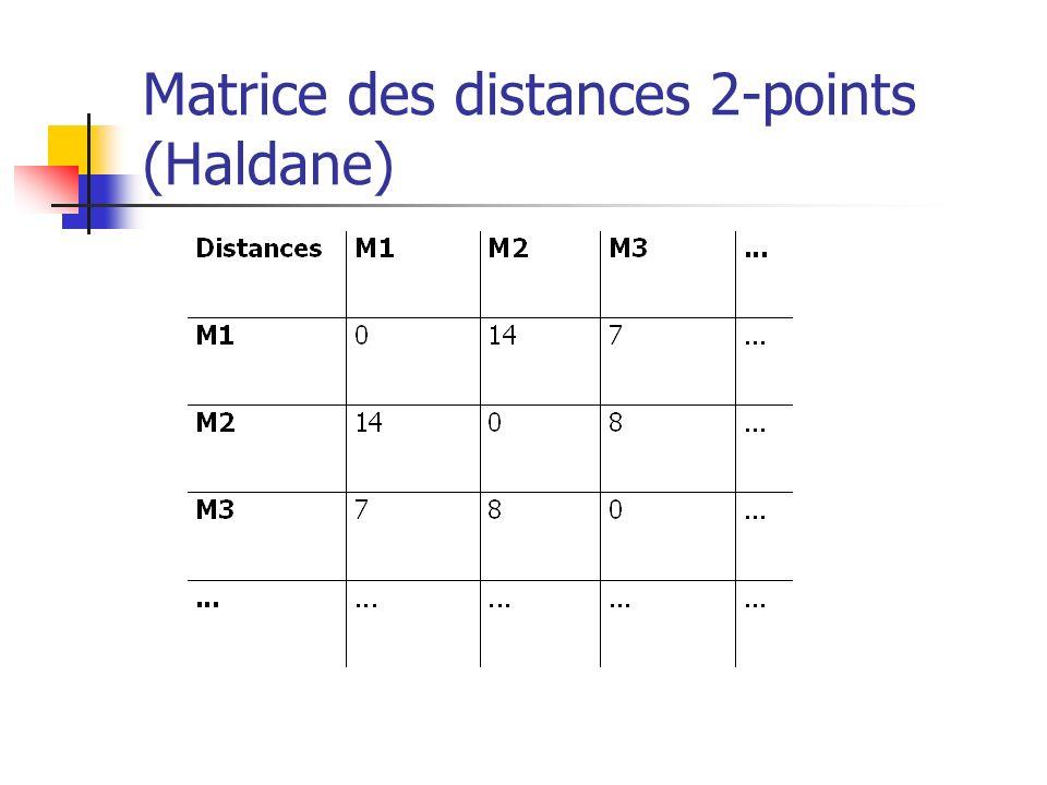 Heuristique « plus petite distance 2-points » (Greedy, multifragment heuristic)