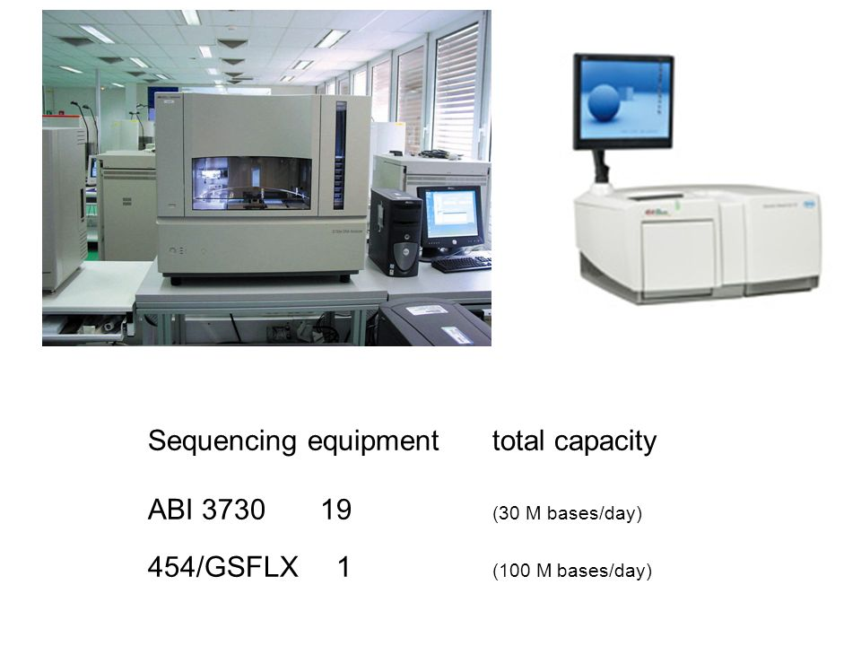 Sequencing equipmenttotal capacity ABI 3730 19 (30 M bases/day) 454/GSFLX 1 (100 M bases/day)