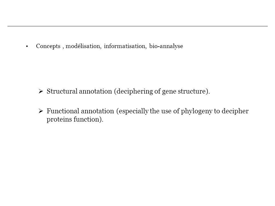 Concepts, modélisation, informatisation, bio-annalyse Structural annotation (deciphering of gene structure). Functional annotation (especially the use