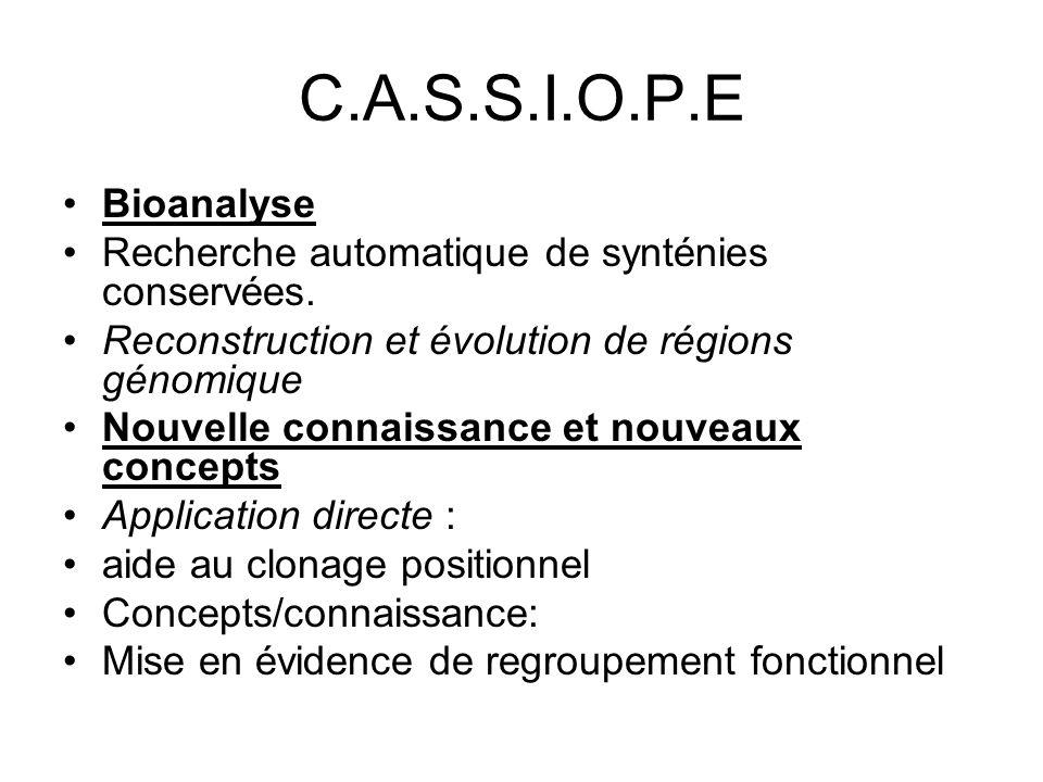 C.A.S.S.I.O.P.E Bioanalyse Recherche automatique de synténies conservées. Reconstruction et évolution de régions génomique Nouvelle connaissance et no