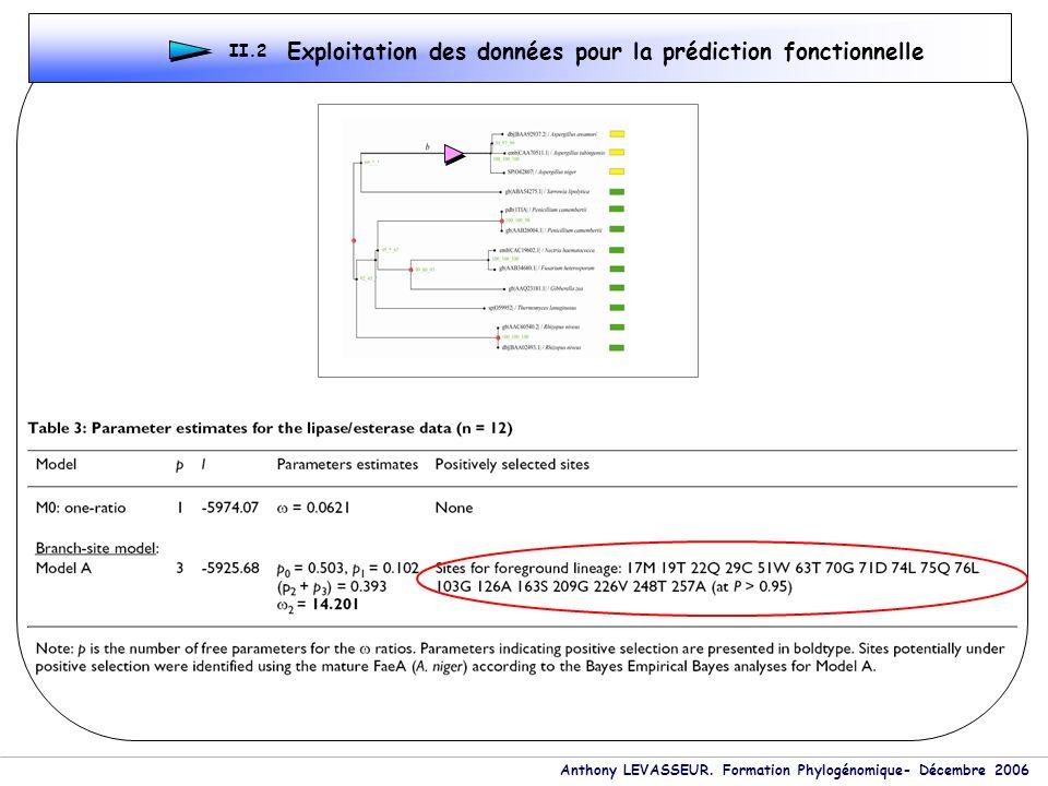 Anthony LEVASSEUR. Formation Phylogénomique- Décembre 2006 Exploitation des données pour la prédiction fonctionnelle II.2