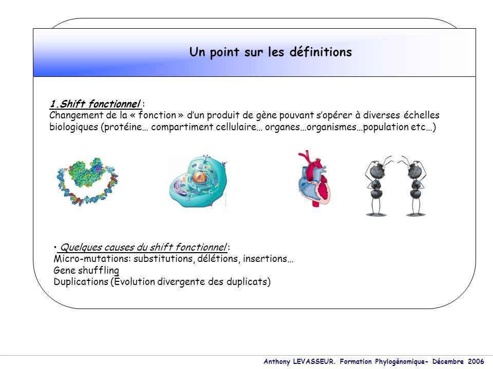 Un point sur les définitions 1.Shift fonctionnel : Changement de la « fonction » dun produit de gène pouvant sopérer à diverses échelles biologiques (