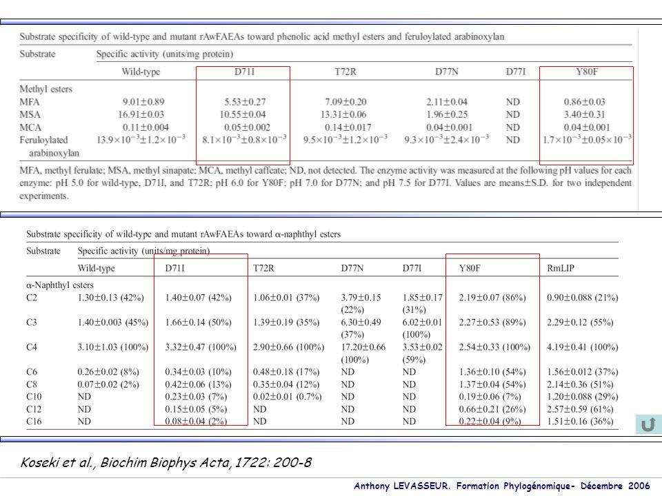 Anthony LEVASSEUR. Formation Phylogénomique- Décembre 2006 Koseki et al., Biochim Biophys Acta, 1722: 200-8