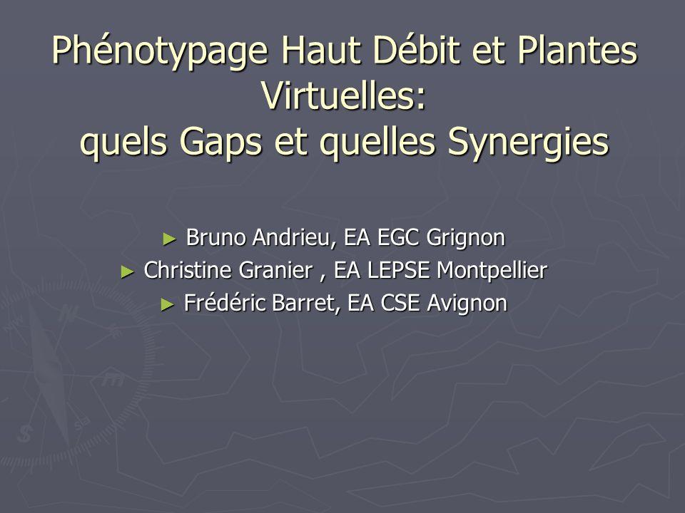 Phénotypage Haut Débit et Plantes Virtuelles: quels Gaps et quelles Synergies Bruno Andrieu, EA EGC Grignon Bruno Andrieu, EA EGC Grignon Christine Gr