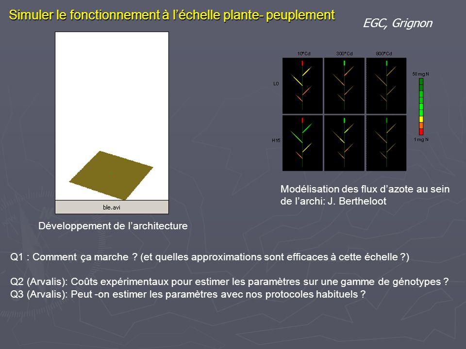 Simuler le fonctionnement à léchelle plante- peuplement EGC, Grignon Modélisation des flux dazote au sein de larchi: J. Bertheloot Q1 : Comment ça mar