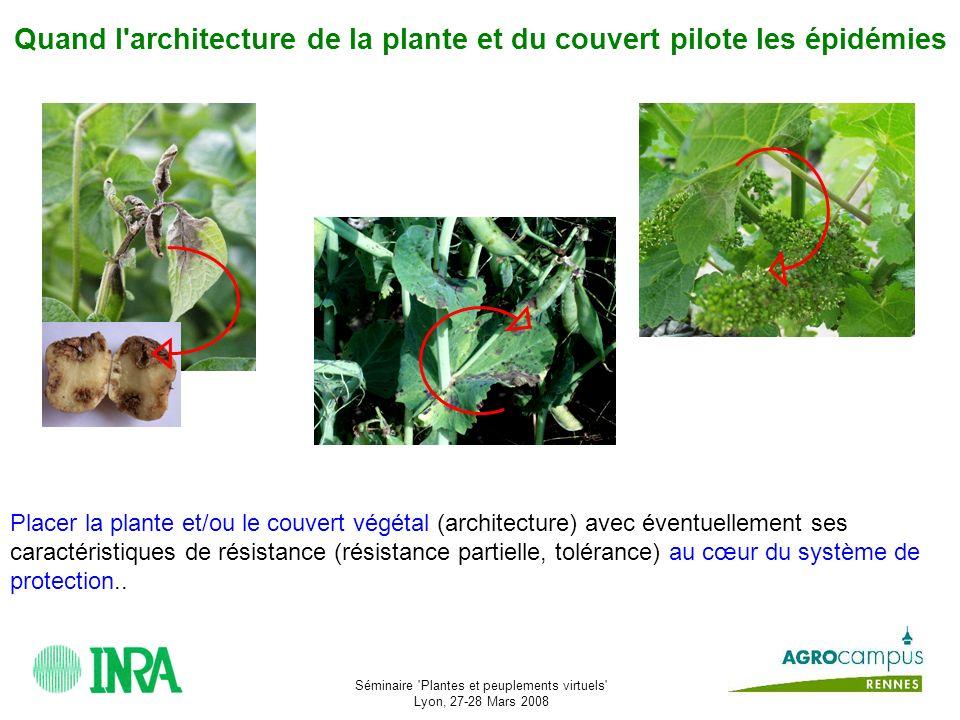 Séminaire Plantes et peuplements virtuels Lyon, 27-28 Mars 2008 - par les équipes sur plusieurs pathosystèmes - Blé/maladies fongiques aériennes - Pois/ascochytose - Igname/anthracnose - Pomme de terre/mildiou - Vigne/oïdium - Pommier/tavelure - Pommier/carpocapse - au sein du réseau EpiArch (cf.