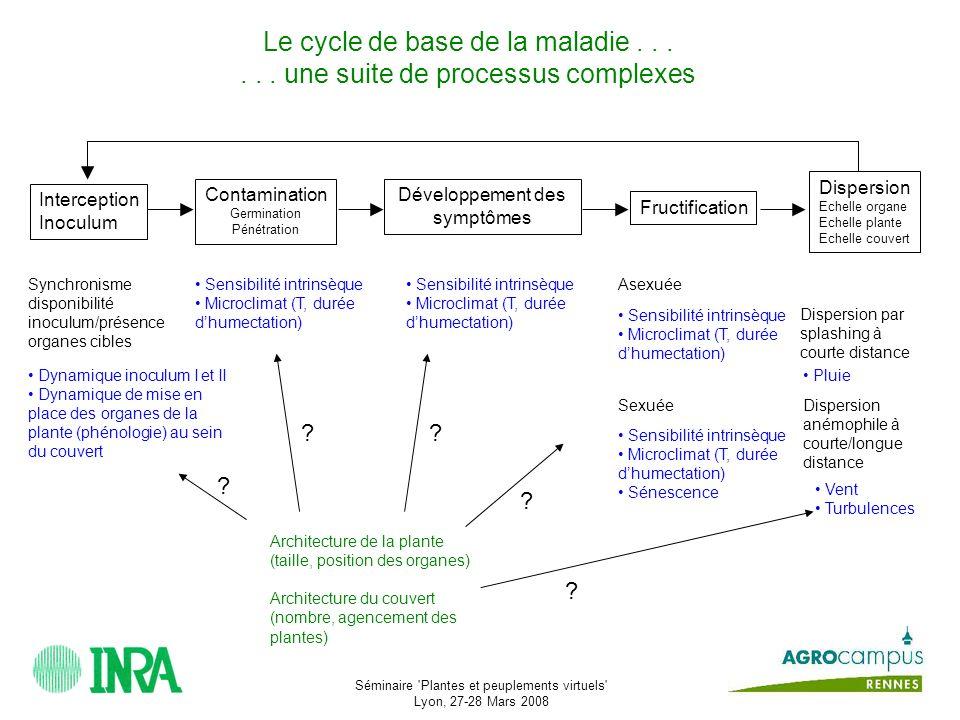 Séminaire Plantes et peuplements virtuels Lyon, 27-28 Mars 2008 Enjeu Quelles conséquences pour les processus épidémiques .