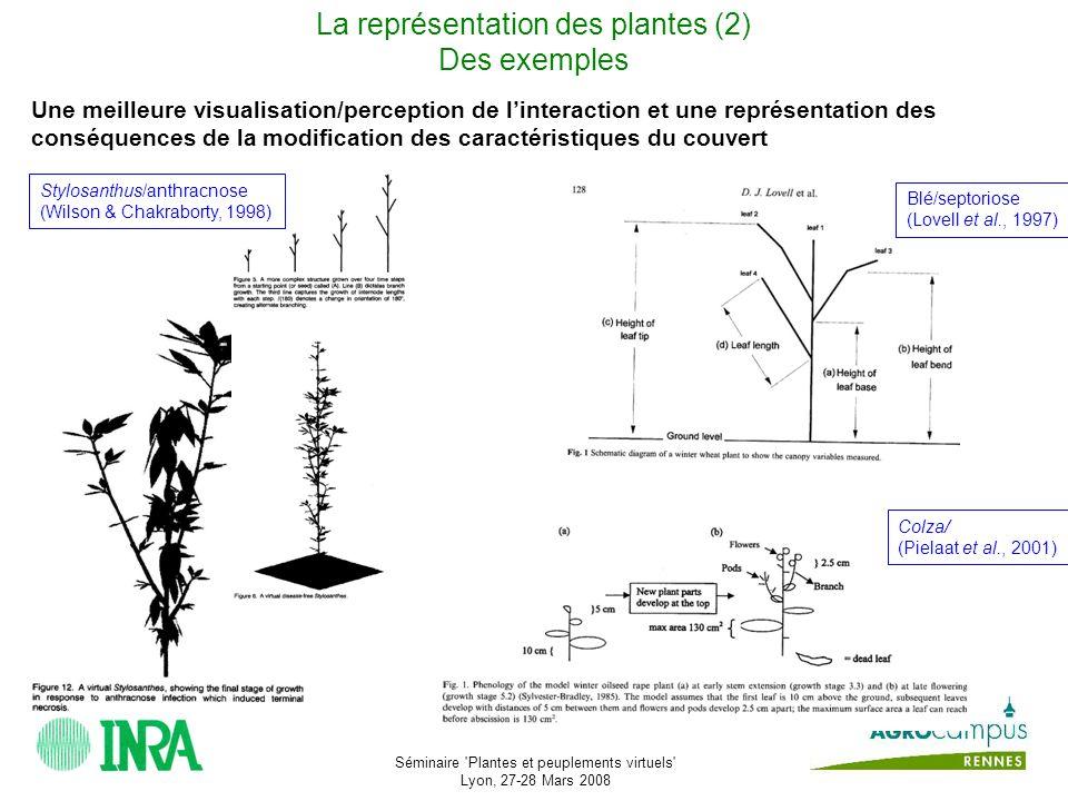 Séminaire Plantes et peuplements virtuels Lyon, 27-28 Mars 2008 Dautres phénomènes à représenter...