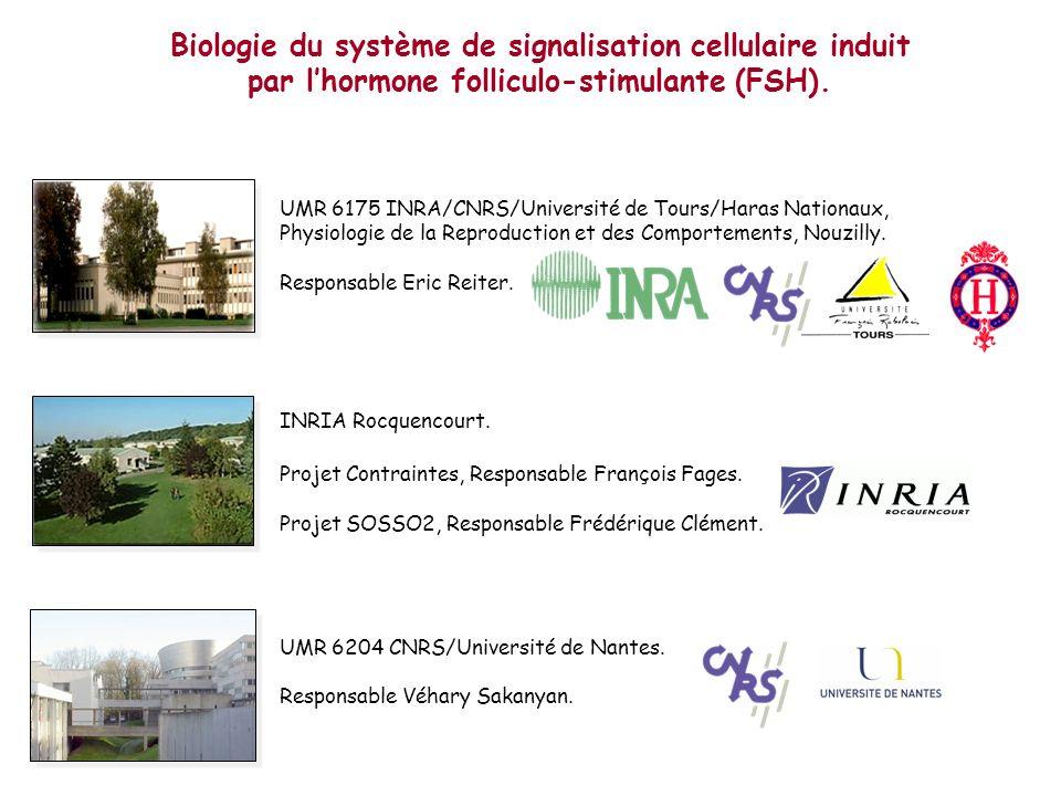 Biologie du système de signalisation cellulaire induit par lhormone folliculo-stimulante (FSH). UMR 6175 INRA/CNRS/Université de Tours/Haras Nationaux