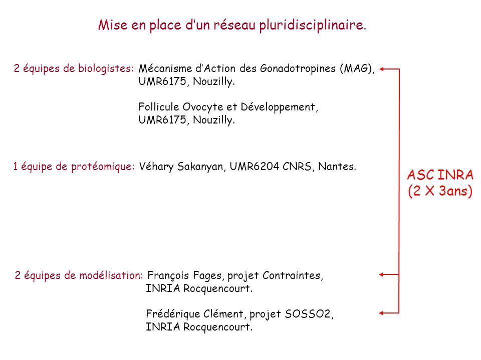 Mise en place dun réseau pluridisciplinaire. 2 équipes de biologistes: Mécanisme dAction des Gonadotropines (MAG), UMR6175, Nouzilly. Follicule Ovocyt