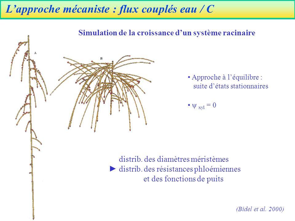Lapproche mécaniste : flux couplés eau / C (Bidel et al.