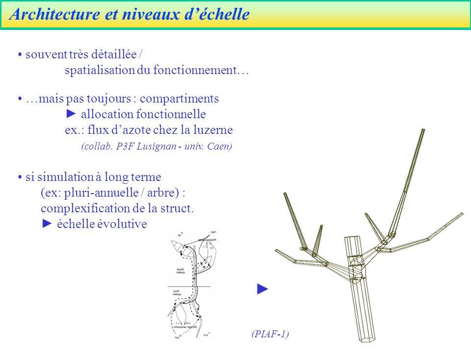 Architecture et niveaux déchelle si simulation à long terme (ex: pluri-annuelle / arbre) : complexification de la struct.