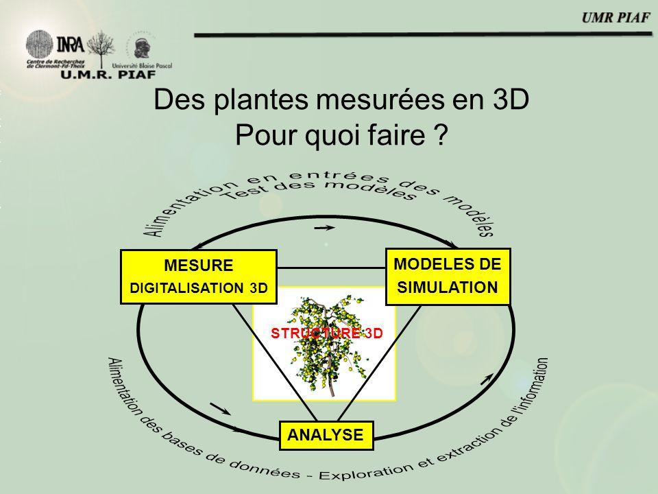 Des plantes mesurées en 3D Pour quoi faire .