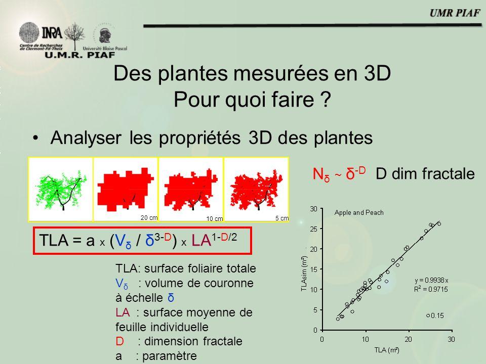 Des plantes mesurées en 3D Pour quoi faire ? Analyser les propriétés 3D des plantes 20 cm 10 cm 5 cm N δ δ -D D dim fractale TLA = a x (V δ / δ 3-D )