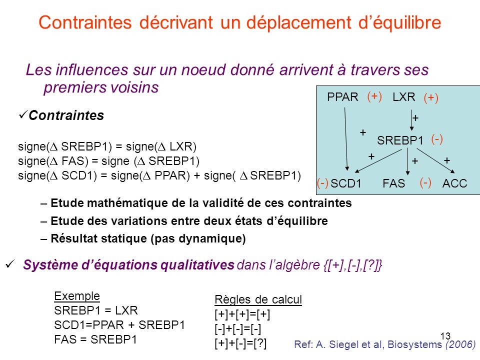 13 Contraintes décrivant un déplacement déquilibre Les influences sur un noeud donné arrivent à travers ses premiers voisins PPAR LXR SREBP1 SCD1 FAS ACC + + + + (+) (-) + Contraintes signe( SREBP1) = signe( LXR) signe( FAS) = signe ( SREBP1) signe( SCD1) = signe( PPAR) + signe( SREBP1) – Etude mathématique de la validité de ces contraintes – Etude des variations entre deux états déquilibre – Résultat statique (pas dynamique) Exemple SREBP1 = LXR SCD1=PPAR + SREBP1 FAS = SREBP1 Règles de calcul [+]+[+]=[+] [-]+[-]=[-] [+]+[-]=[?] Système déquations qualitatives dans lalgèbre {[+],[-],[?]} Ref: A.