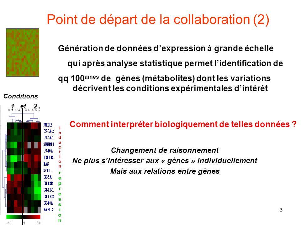 3 Génération de données dexpression à grande échelle qui après analyse statistique permet lidentification de qq 100 aines de gènes (métabolites) dont les variations décrivent les conditions expérimentales dintérêt Point de départ de la collaboration (2) Comment interpréter biologiquement de telles données .