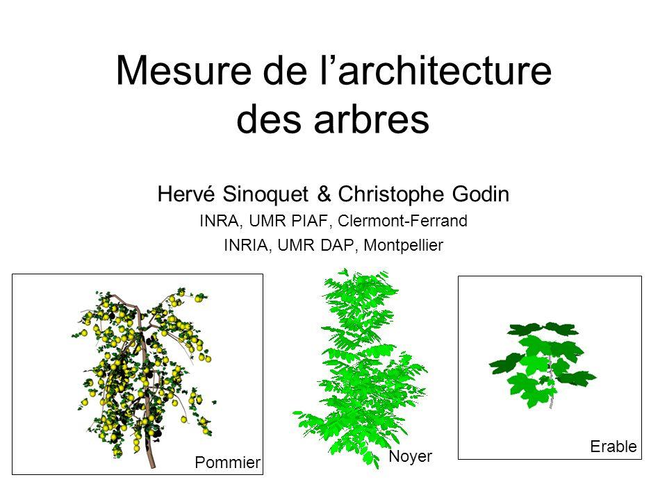 Mesure de larchitecture des arbres Hervé Sinoquet & Christophe Godin INRA, UMR PIAF, Clermont-Ferrand INRIA, UMR DAP, Montpellier Pommier Erable Noyer