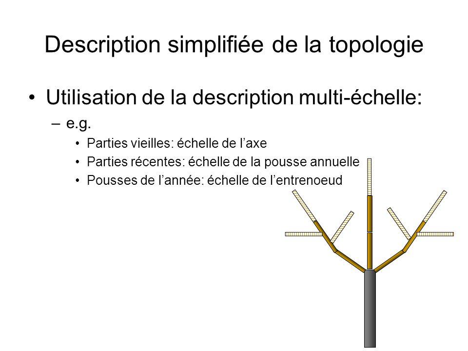 Description simplifiée de la topologie Utilisation de la description multi-échelle: –e.g. Parties vieilles: échelle de laxe Parties récentes: échelle