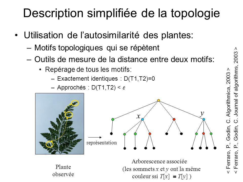 Description simplifiée de la topologie Utilisation de lautosimilarité des plantes: –Motifs topologiques qui se répètent –Outils de mesure de la distan