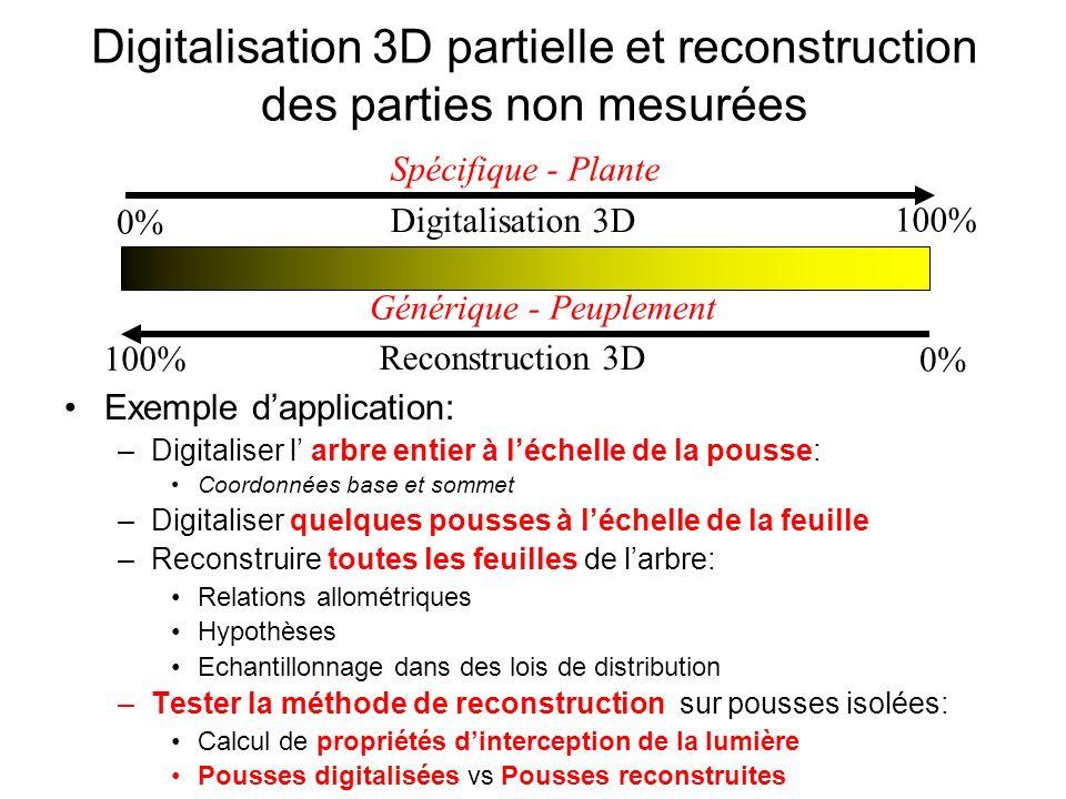 Digitalisation 3D partielle et reconstruction des parties non mesurées Exemple dapplication: –Digitaliser l arbre entier à léchelle de la pousse: Coor