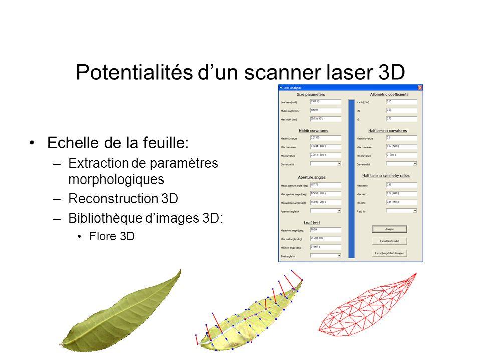 Potentialités dun scanner laser 3D Echelle de la feuille: –Extraction de paramètres morphologiques –Reconstruction 3D –Bibliothèque dimages 3D: Flore