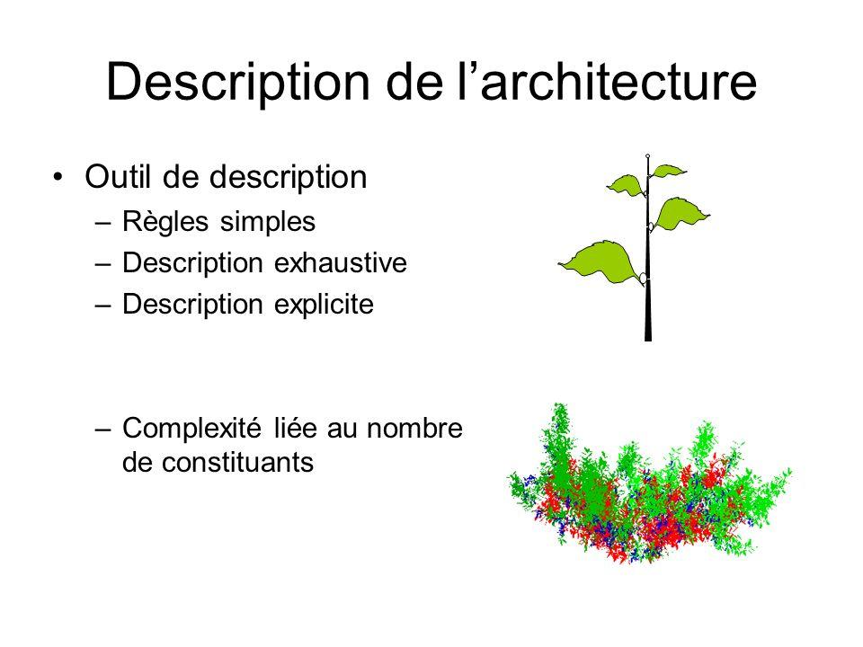 Description de la topologie Plusieurs échelles: Plante Unité de croissance Métamère –Décomposition Au sein dune échelle: –Succession –Ramification
