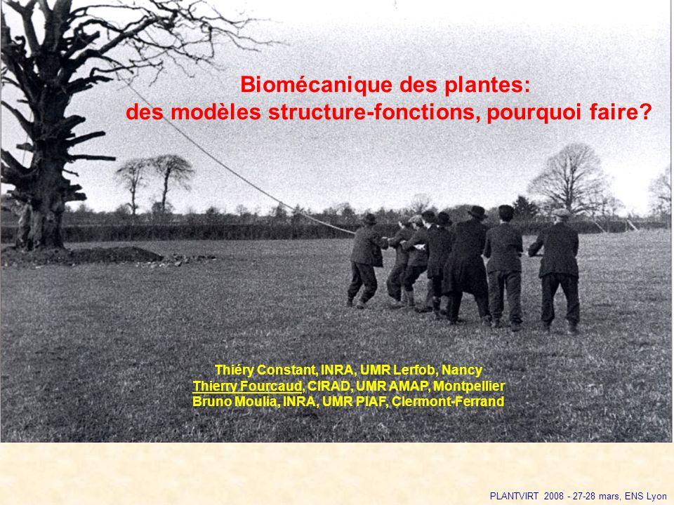Biomécanique des plantes: des modèles structure-fonctions, pourquoi faire? Thiéry Constant, INRA, UMR Lerfob, Nancy Thierry Fourcaud, CIRAD, UMR AMAP,