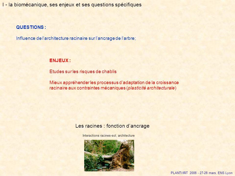 PLANTVIRT 2008 - 27-28 mars, ENS Lyon QUESTIONS : Influence de larchitecture racinaire sur lancrage de larbre; ENJEUX : Etudes sur les risques de chab