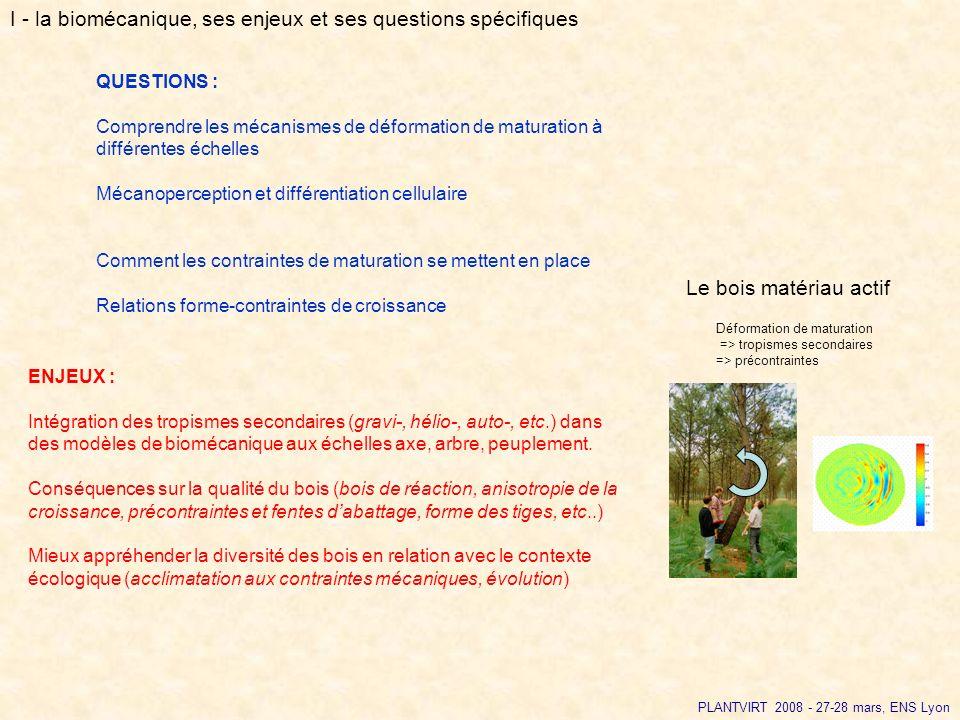 PLANTVIRT 2008 - 27-28 mars, ENS Lyon QUESTIONS : Comprendre les mécanismes de déformation de maturation à différentes échelles Mécanoperception et di