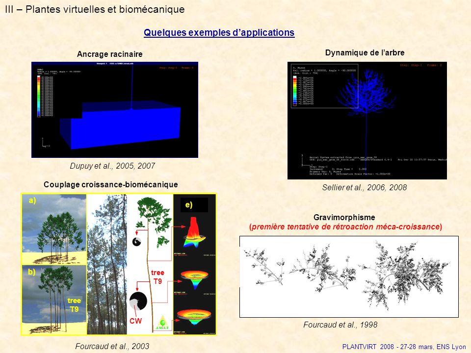 III – Plantes virtuelles et biomécanique Quelques exemples dapplications Ancrage racinaire PLANTVIRT 2008 - 27-28 mars, ENS Lyon Dupuy et al., 2005, 2