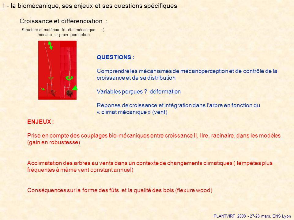 PLANTVIRT 2008 - 27-28 mars, ENS Lyon QUESTIONS : Comprendre les mécanismes de mécanoperception et de contrôle de la croissance et de sa distribution