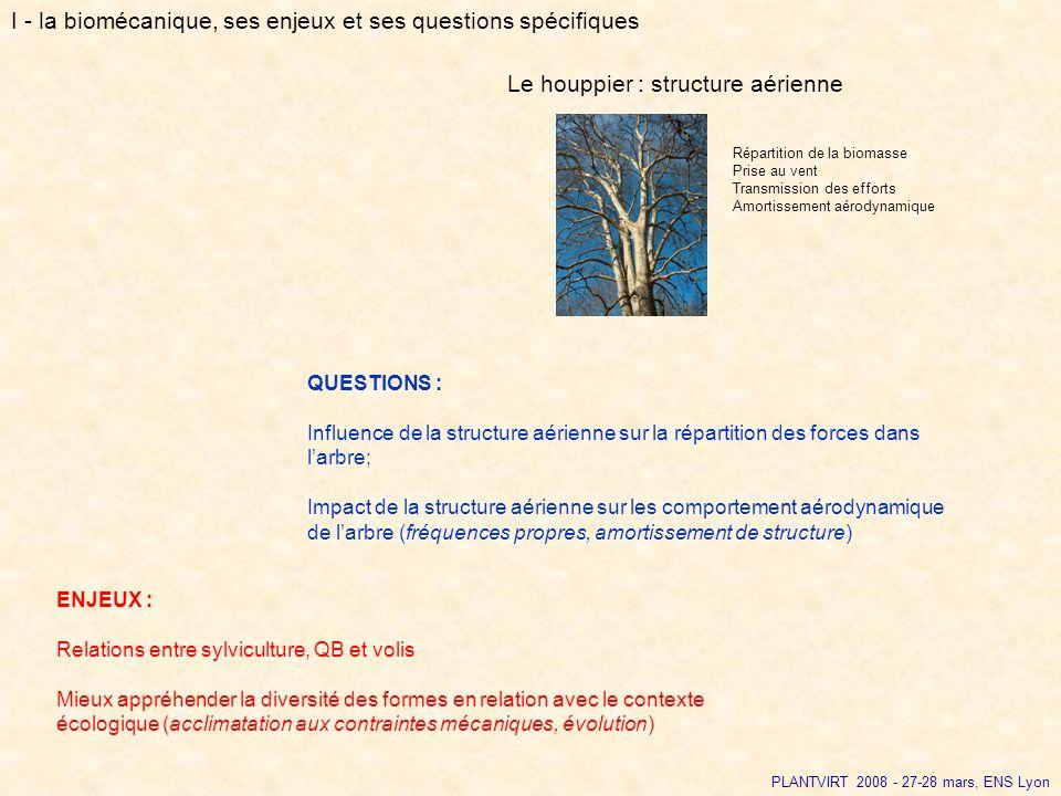 PLANTVIRT 2008 - 27-28 mars, ENS Lyon QUESTIONS : Influence de la structure aérienne sur la répartition des forces dans larbre; Impact de la structure